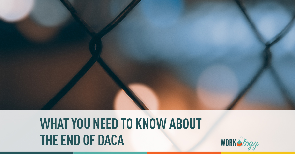 what you need to know about the end of daca