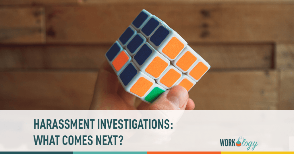 harassment investigations what comes next