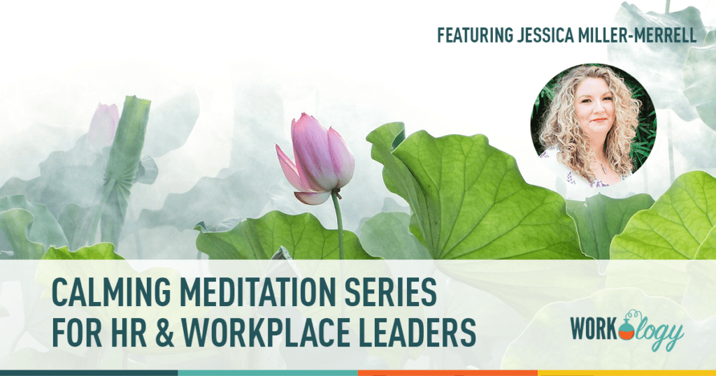 meditation for HR and workplace leaders - lotus image